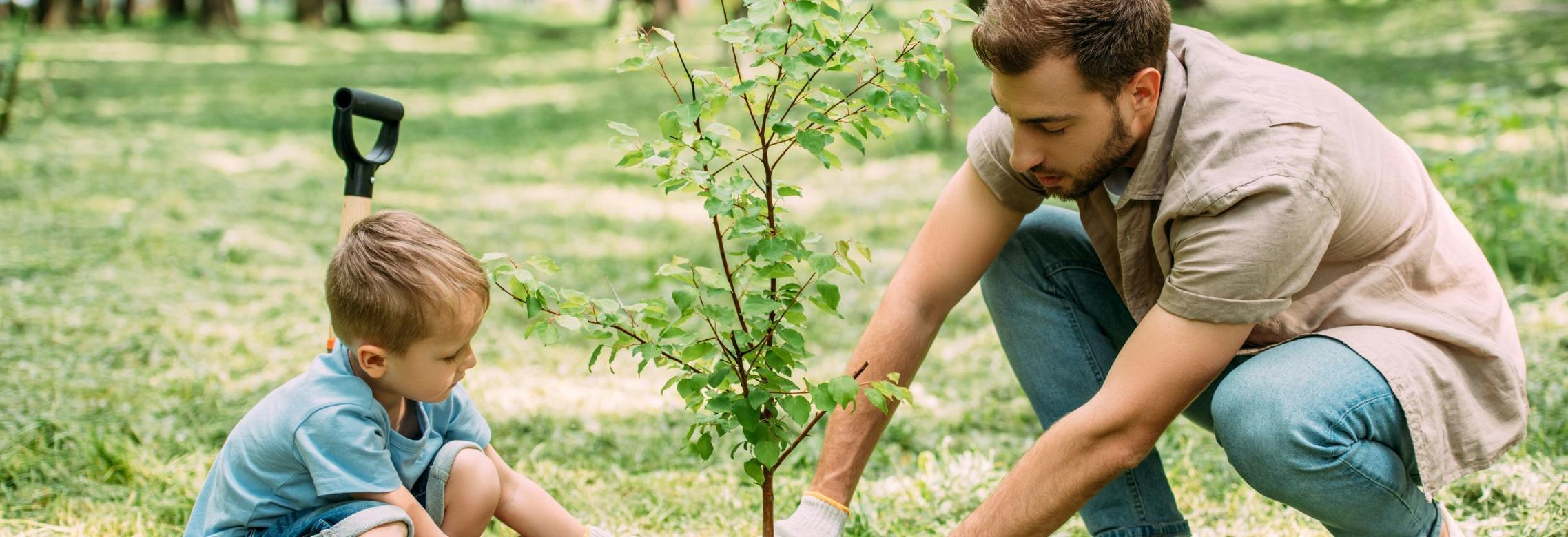 Green Living - Father and Son Planting Tree
