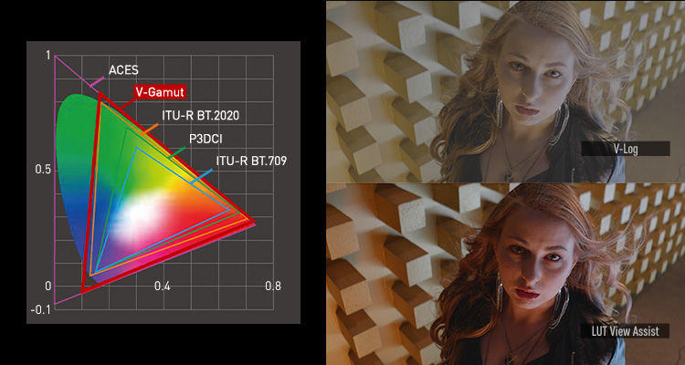 Lumix S1H Cinema camera V-LOG chart and LUT view assist example
