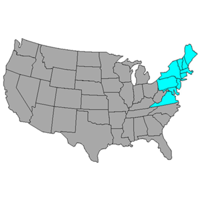 United States map with Northeast states highlights