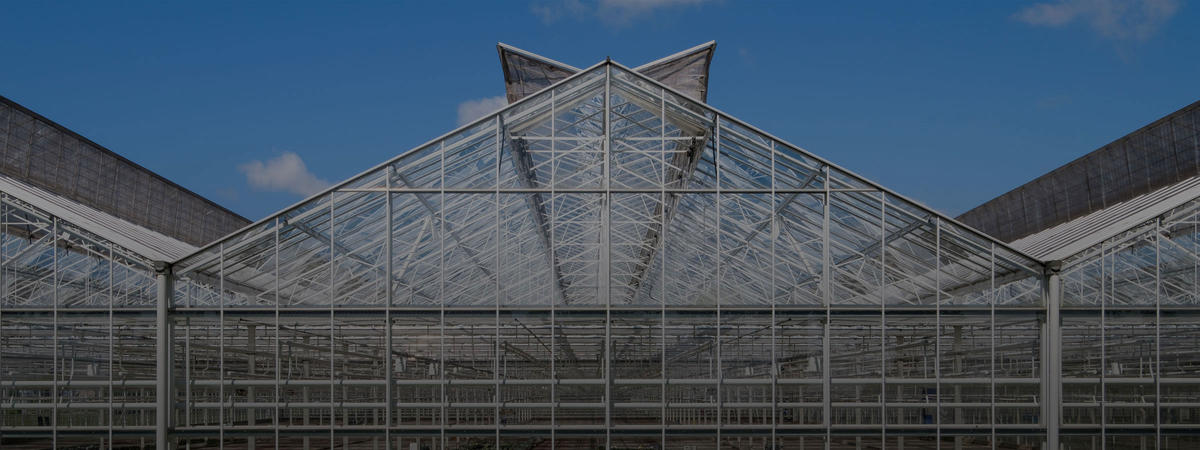 4 trends in horticulture